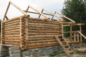 Выбор материалов для постройки сауны своими руками
