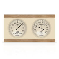 termogigrometr-vikter-tgs4